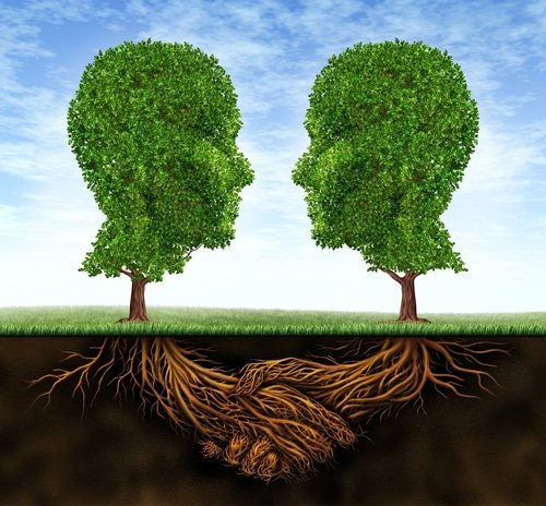 Two plant shaped heads connecting in the roots , Transforming toxic relationships with Integrative Hypntoherapy